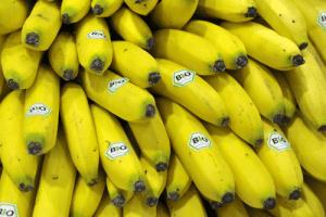 plátanos biológicos